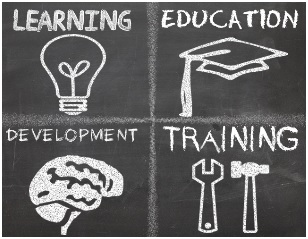 training-vs-education-1